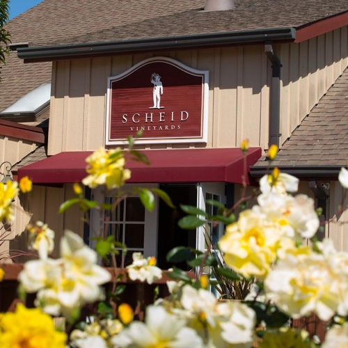 Scheid Vineyards tasting room sign